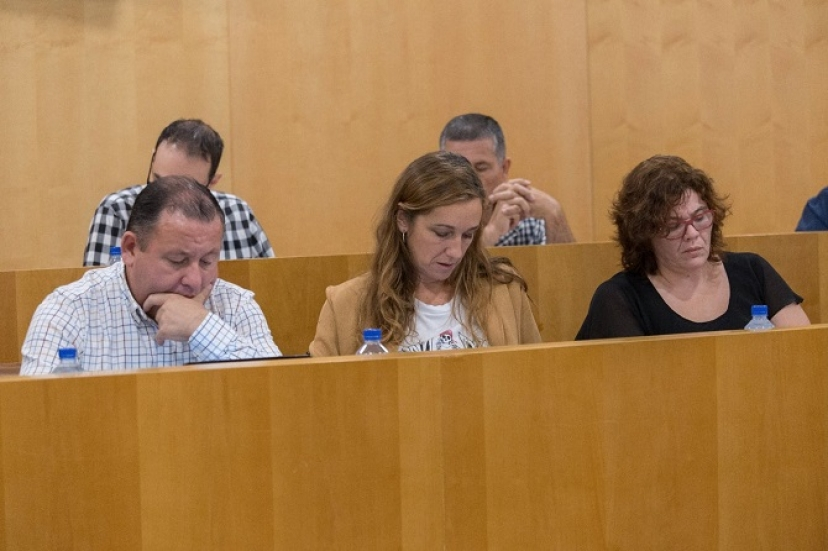 El PSOE rechaza en Diputación de Sevilla nuestra Proposición para exigir a la Junta que cumpla la Ley que financia a los ayuntamientos andaluces (PATRICA)