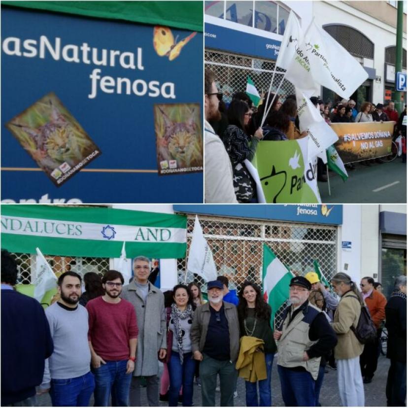 Decimos #DoñanaNoSeToca ante las oficinas de Gas Natural en Sevilla