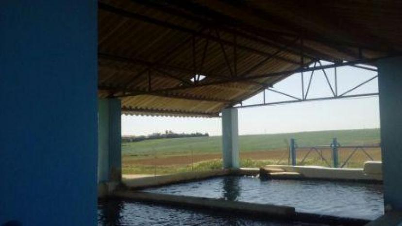 Guillena: IU exige la retirada de la cubierta de amianto que cubre la planta potabilizadora de aguas del municipio