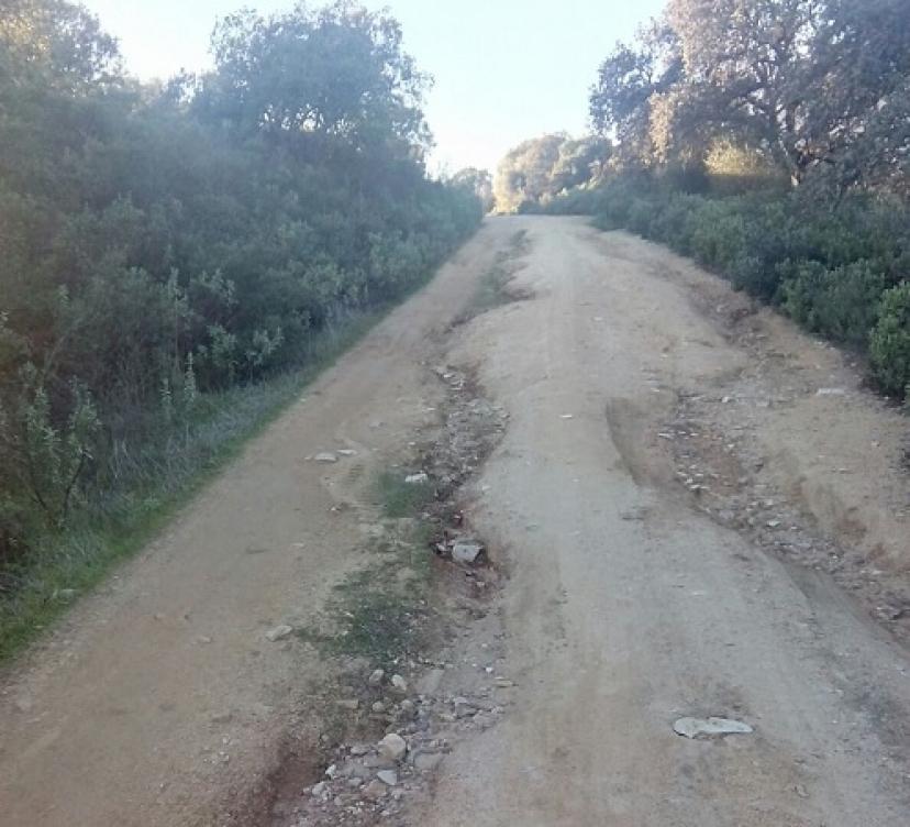 Gerena: Denunciamos el abandono y la falta de inversiones en los caminos rurales