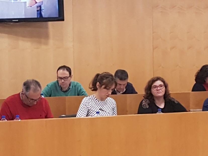 El grupo de diputadas y diputados de IU denuncia la falta de información de la Diputación sobre la liquidación del Presupuesto del 2018