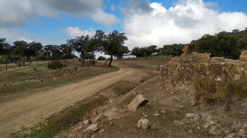 NIVA-IU apoya la marcha para recuperar la vereda del Salto de la Trocha en la Sierra Morena de Sevilla