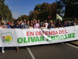 En Defensa del Olivar